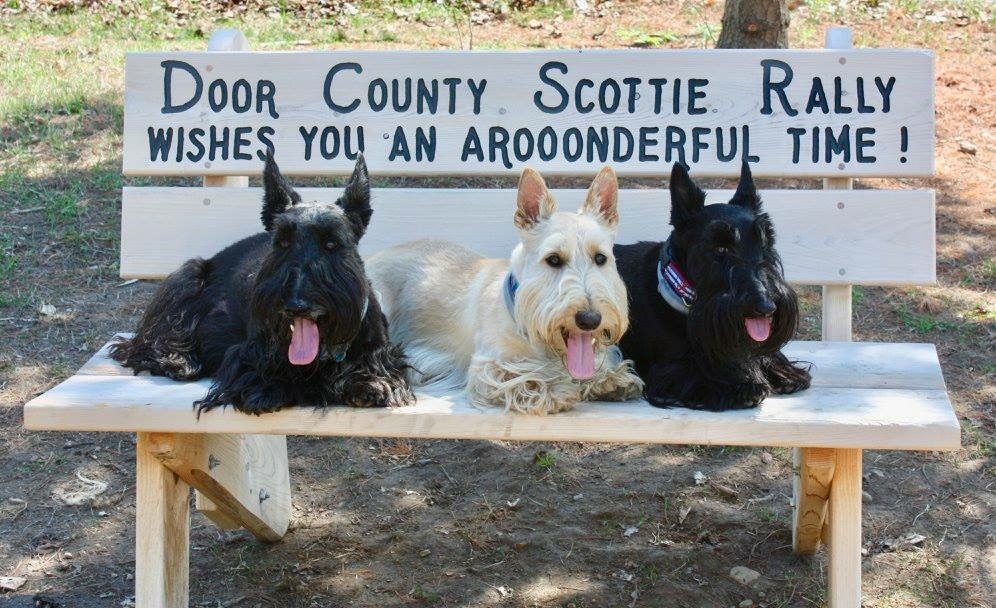 Door County Scottie Rally Health Rescue Fellowship